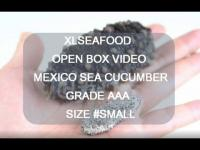美国旭龙行野生海参墨西哥双排刺参肥仔参一级品6年参小XLSEAFOOD Sun Dried Wild Caught Mexico Sea Cucumber AAA Grade 6 year